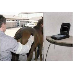Sonografický přístroj Exago - vyšetření